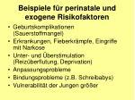 beispiele f r perinatale und exogene risikofaktoren