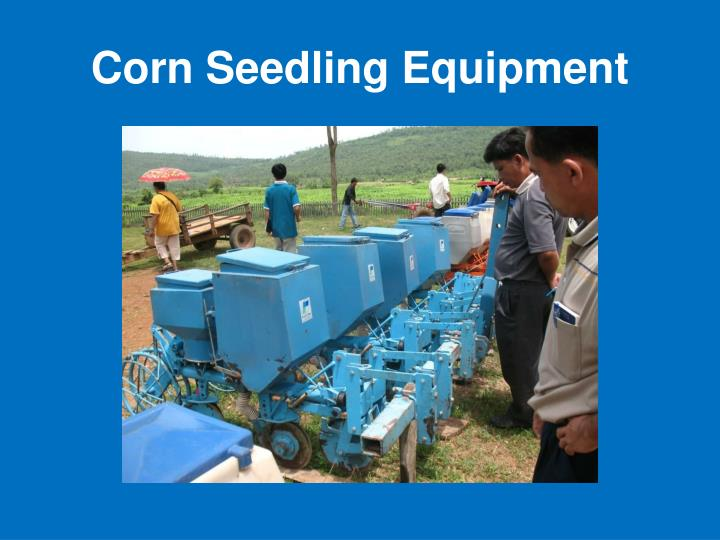 Corn Seedling Equipment