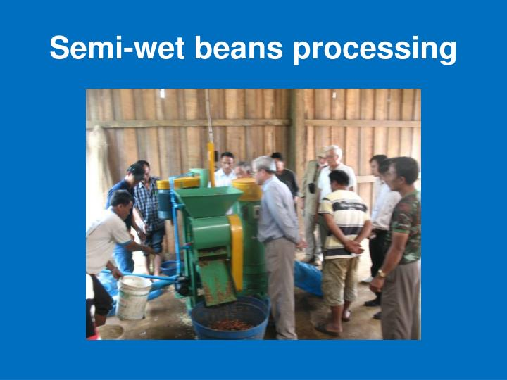 Semi-wet beans processing