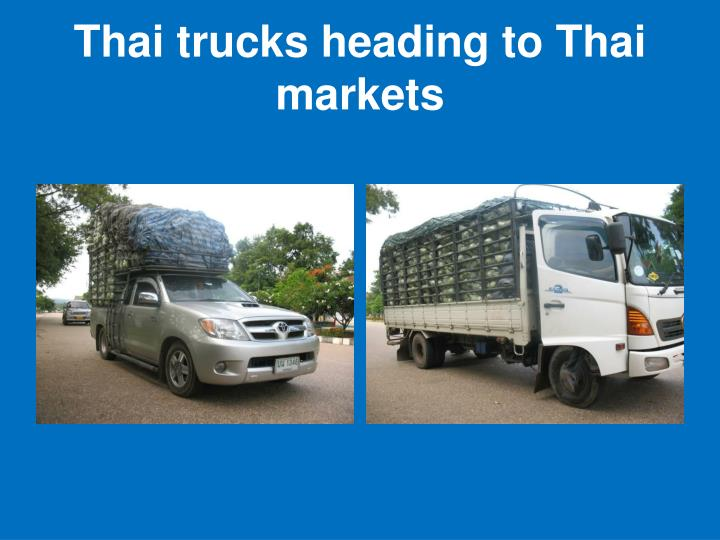 Thai trucks heading to Thai markets