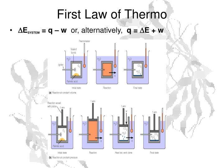 First Law of Thermo