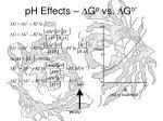 ph effects d g o vs d g o
