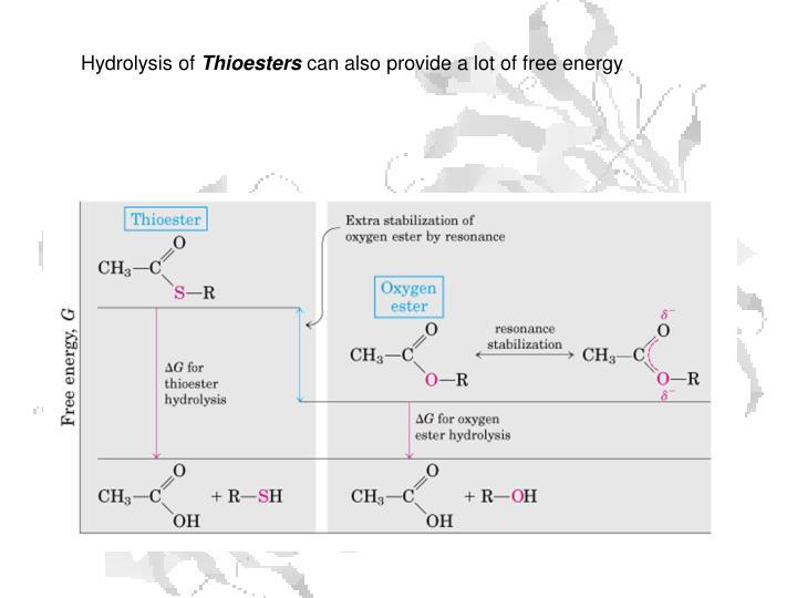 Hydrolysis of