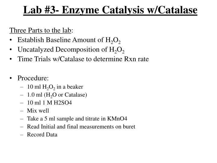 Lab 3 enzyme catalysis w catalase