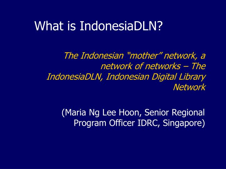 What is IndonesiaDLN?