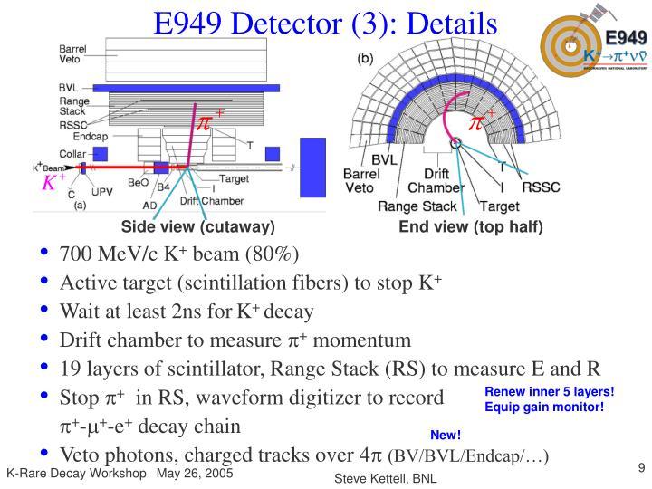 E949 Detector (3): Details