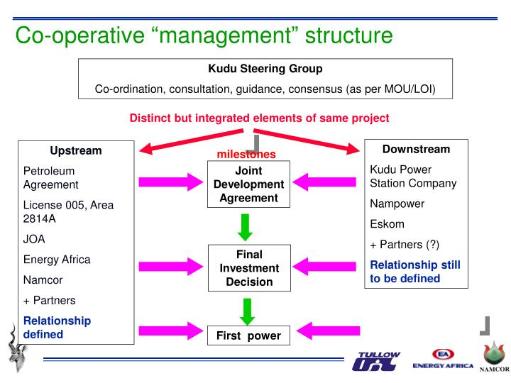 "Co-operative ""management"" structure"