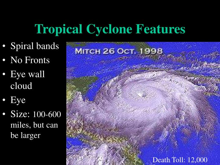 Tropical cyclone features