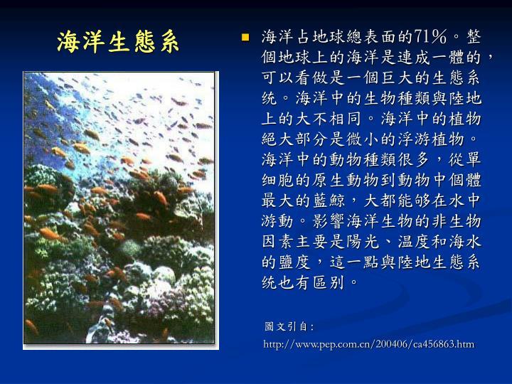 海洋生態系