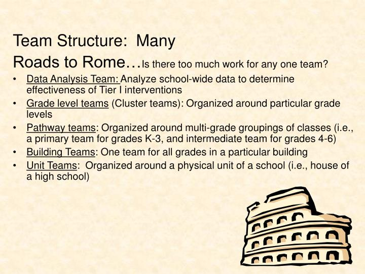Team Structure:  Many