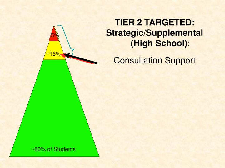 TIER 2 TARGETED: