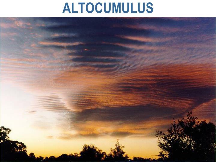 ALTOCUMULUS