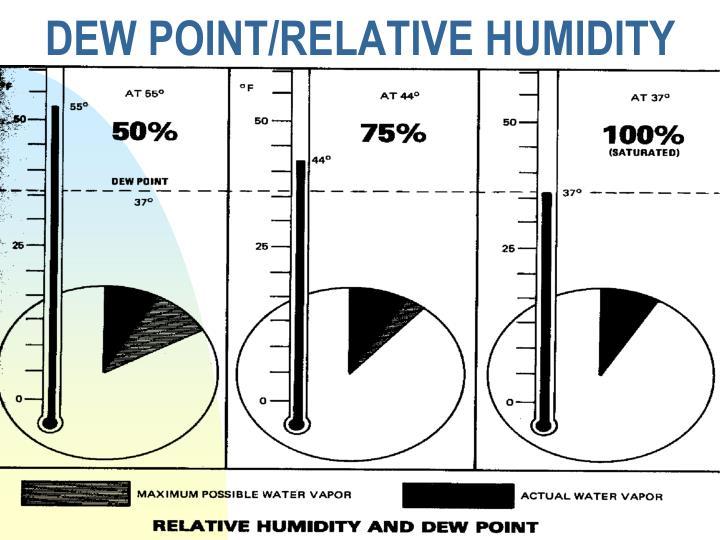 DEW POINT/RELATIVE HUMIDITY