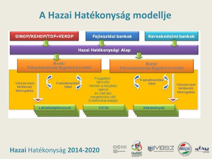 A Hazai Hatékonyság modellje