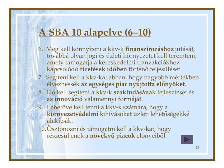 A SBA 10 alapelve (6–10)