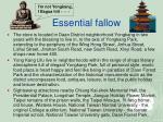 essential fallow