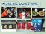 pastoral beef noodles photo