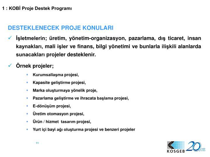 1 : KOBİ Proje Destek Programı