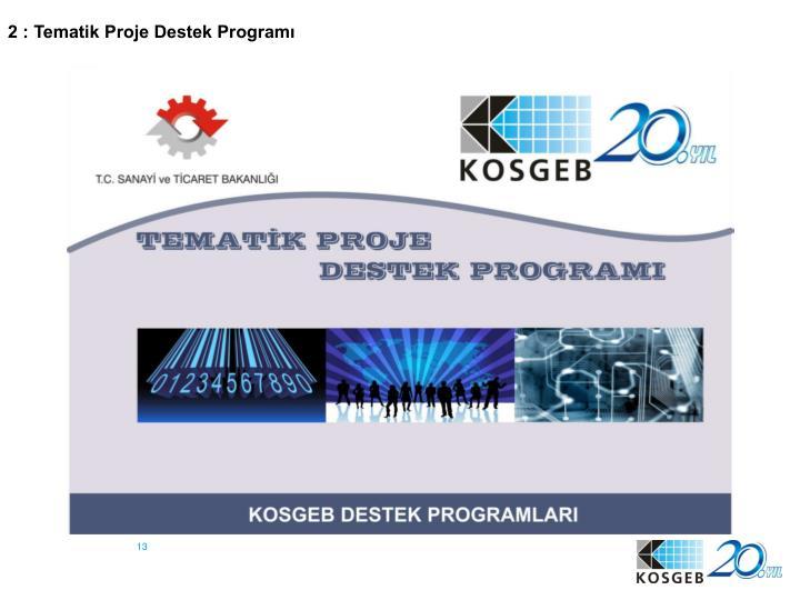 2 : Tematik Proje Destek Programı