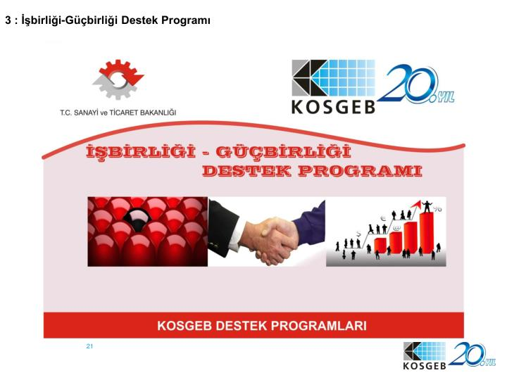 3 : İşbirliği-Güçbirliği Destek Programı