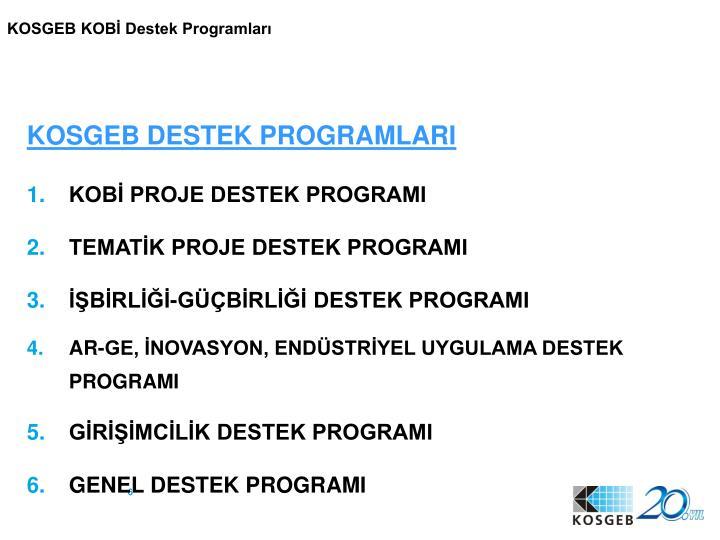 KOSGEB KOBİ Destek Programları