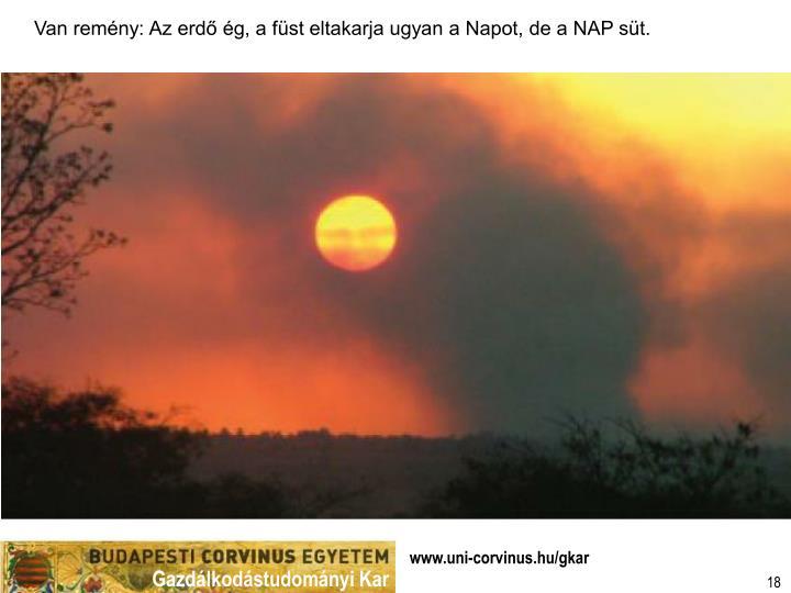 Van remény: Az erdő ég, a füst eltakarja ugyan a Napot, de a NAP süt.