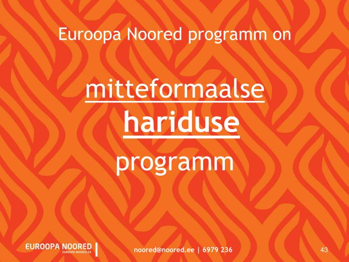 Euroopa Noored programm on