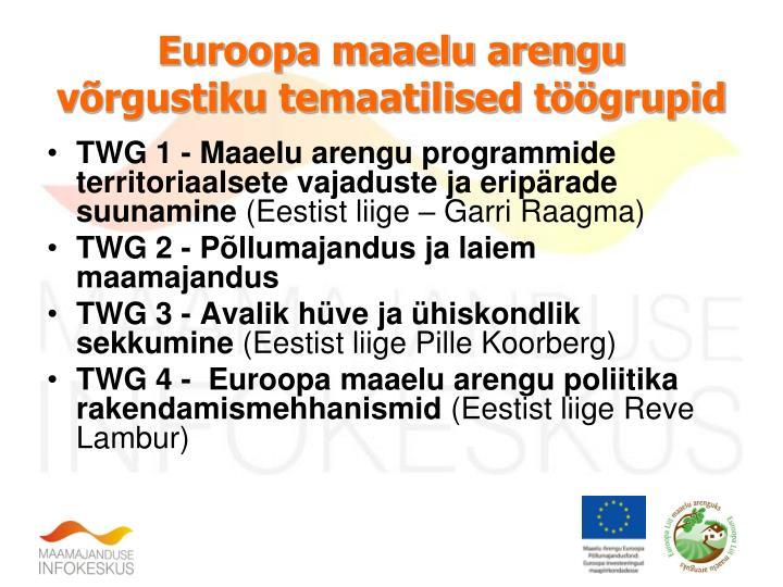 Euroopa maaelu arengu võrgustiku temaatilised töögrupid