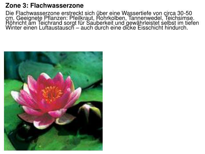 Zone 3: Flachwasserzone