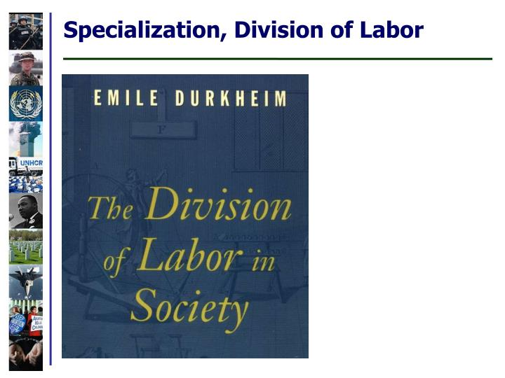 Specialization, Division of Labor