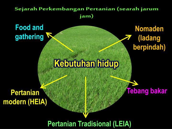 Sejarah Perkembangan Pertanian (searah jarum jam)