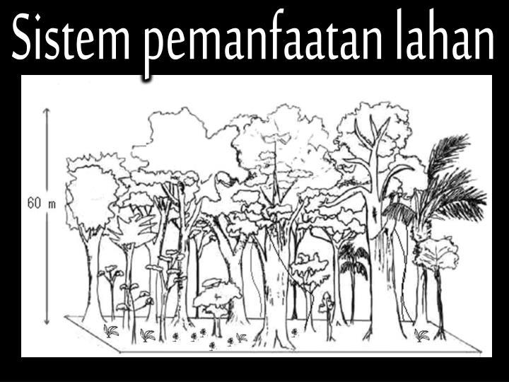 Sistem pemanfaatan lahan