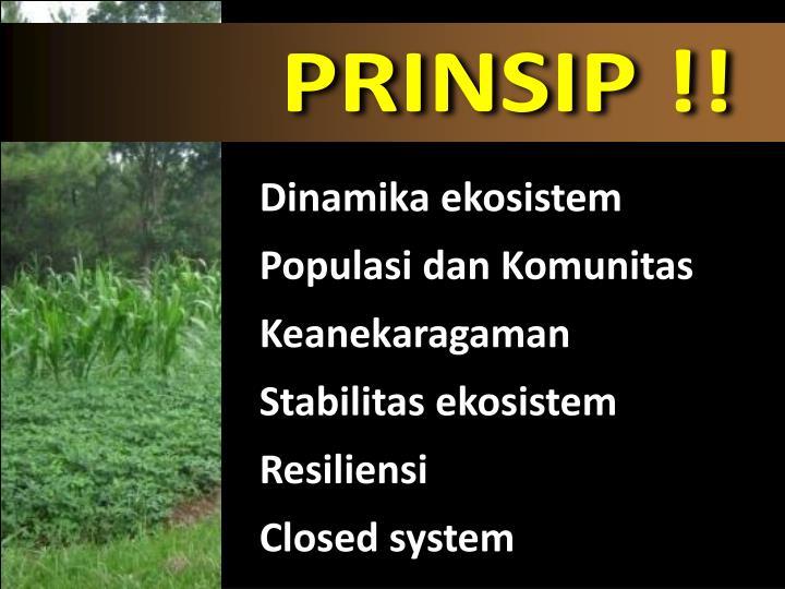 PRINSIP !!