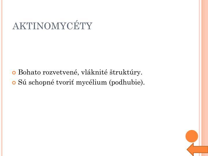 AKTINOMYCÉTY