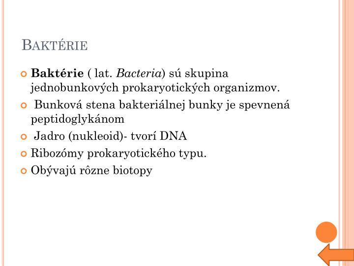 Baktérie