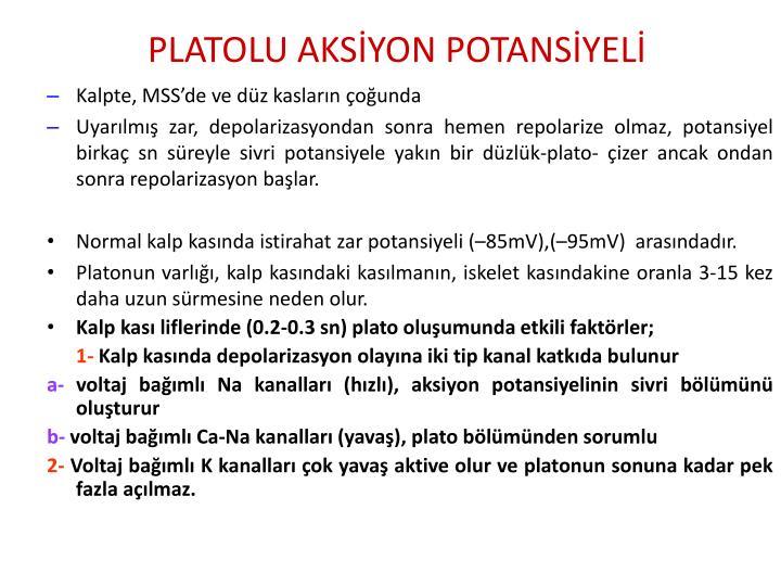 PLATOLU AKSİYON POTANSİYELİ