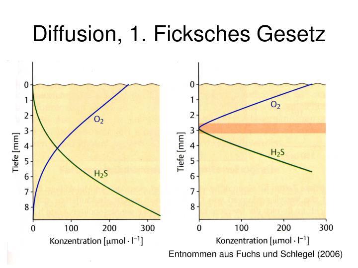 Diffusion, 1. Ficksches Gesetz