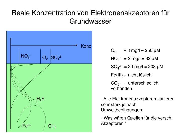 Reale Konzentration von Elektronenakzeptoren für Grundwasser