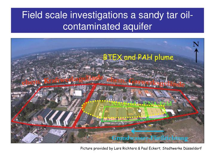 Field scale investigations a sandy tar oil-contaminated aquifer