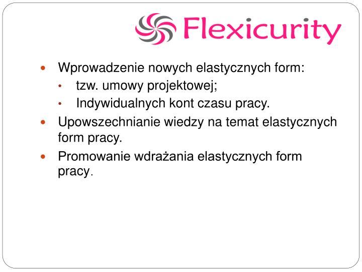 Wprowadzenie nowych elastycznych form: