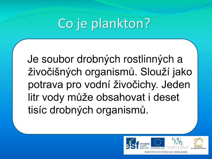 Co je plankton?