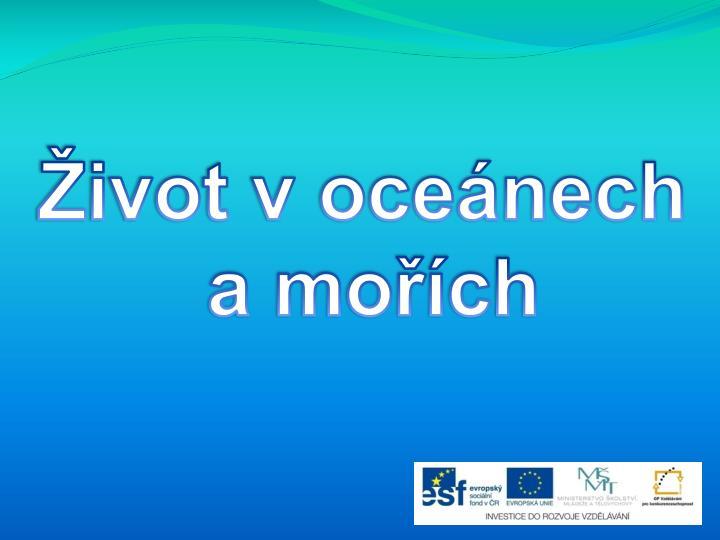 Život v oceánech