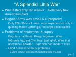 a splendid little war