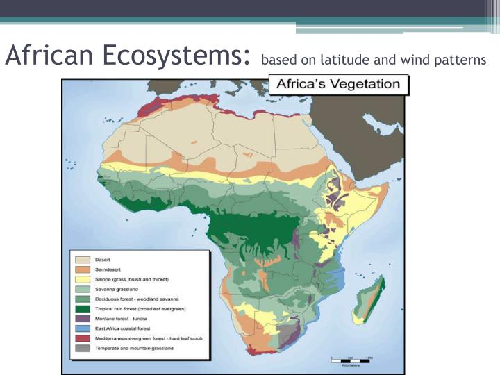 African Ecosystems: