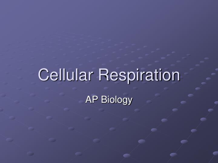 ap biology essay scoring guidlines respiration What's your favorite concept to study in ap biology i enjoy all of the topics but when i study for fun i tend to focus on evolution how to design an experiment for an essay question.