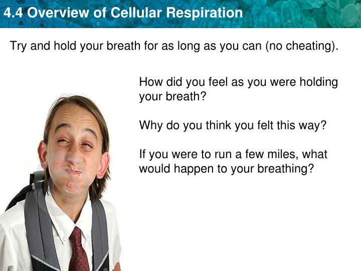 Try and hold your breath for as long as you can (no cheating).