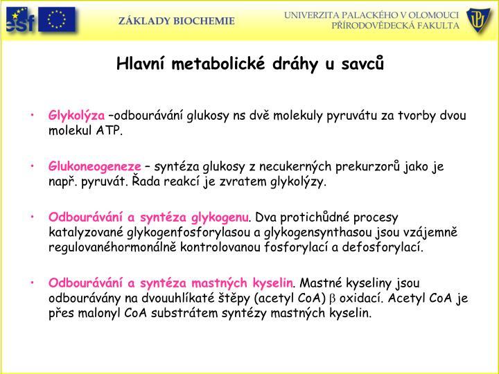 Hlavní metabolické dráhy u savců