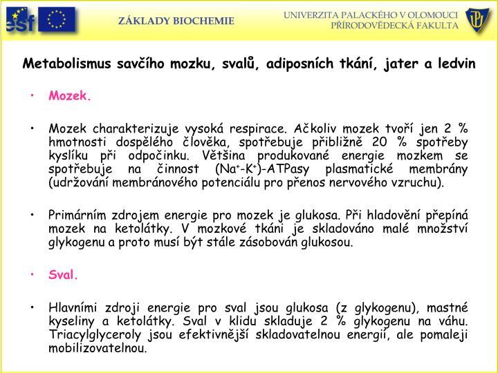 Metabolismus savho mozku, sval, adiposnch tkn, jater a ledvin