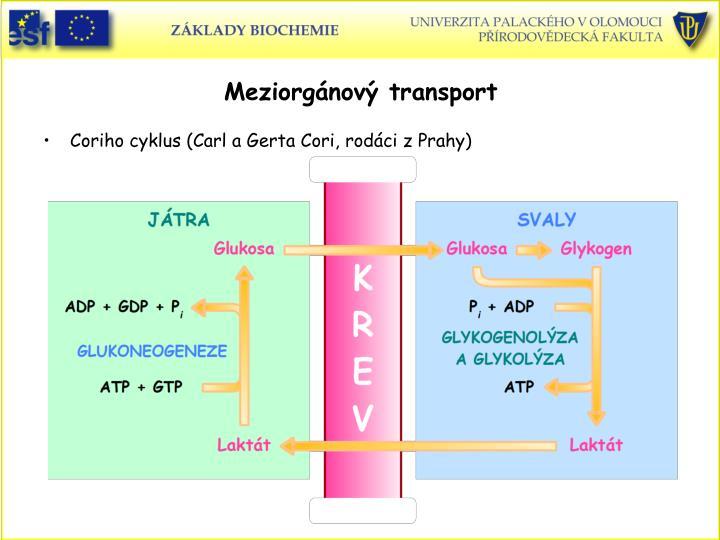 Meziorgnov transport