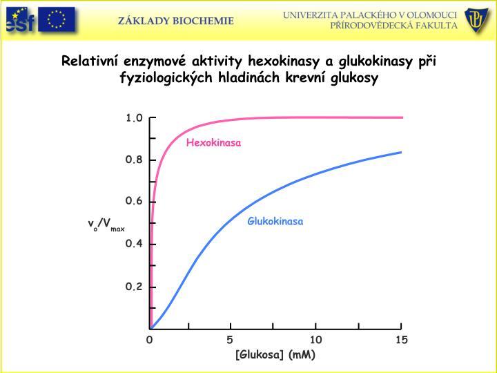 Relativní enzymové aktivity hexokinasy a glukokinasy při fyziologických hladinách krevní glukosy